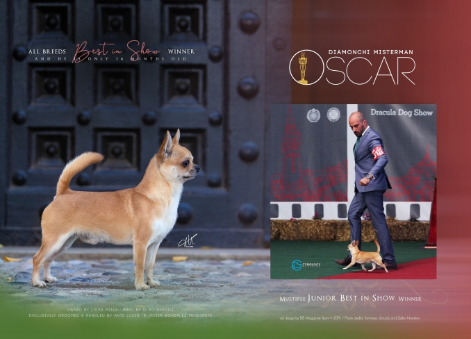 ADV for Best In Show magazine - ...